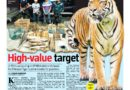 ASEANEWS HEADLINES:  High-value Target (Malayan Tiger)