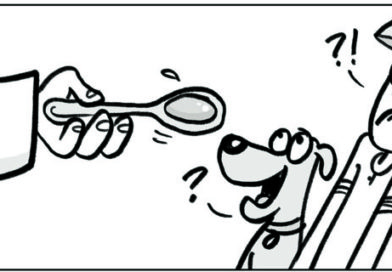 EDITORIAL CARTOONS:   Ivermectin and science / Good for DOG – Good for Man?